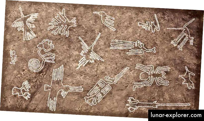 Alcuni pittogrammi delle Linee di Nazca