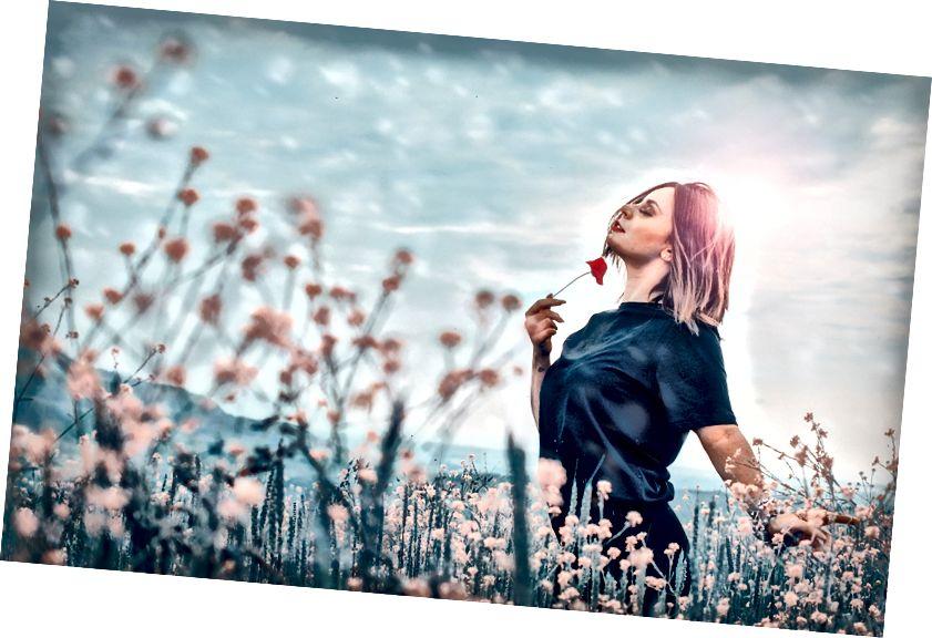 Unsplash-də Erriko Boccia-nın şəkli. BINGO. BINGO VAR !!!