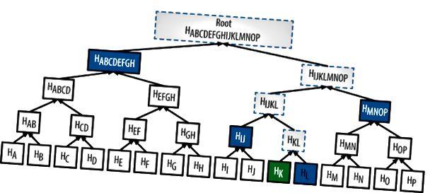 Při pokusu o ověření obrazu Hk, hash s HL dá HKL. Pokud to uděláte správně na stromě, pak by se vaše poslední hash mělo shodovat s kořenem. Voilà, obrázek ověřen.
