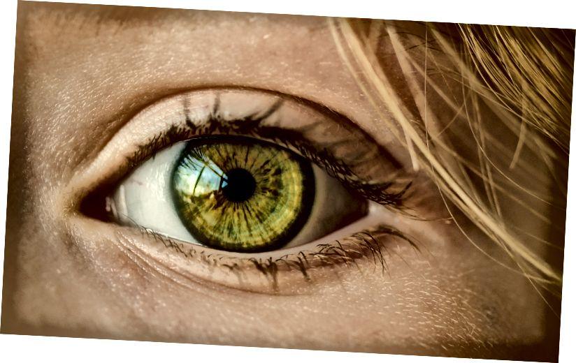 حقوق الصورة: Pixabay.com
