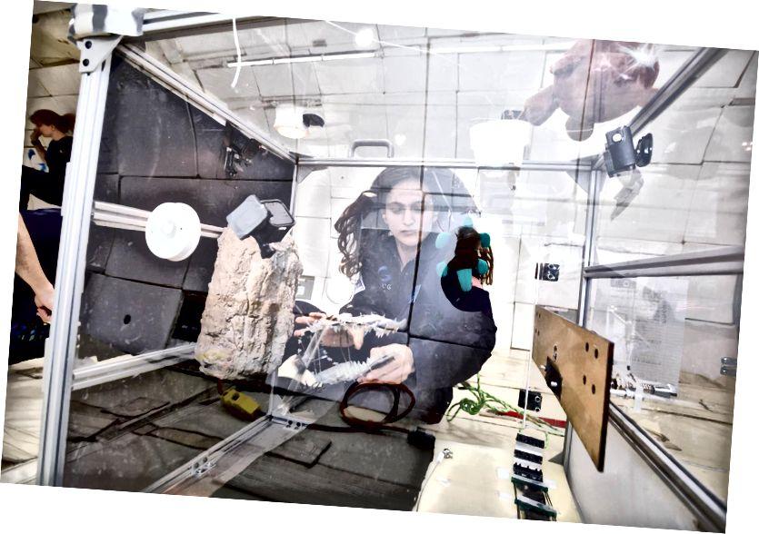 জুলিয়ানা চেরস্টন শূন্য মাধ্যাকর্ষণ বিমানের সময় তার গ্রেপলার প্রোটোটাইপ পরীক্ষা করে। ক্রেডিট: স্টিভ বক্সল / জিরো-জি