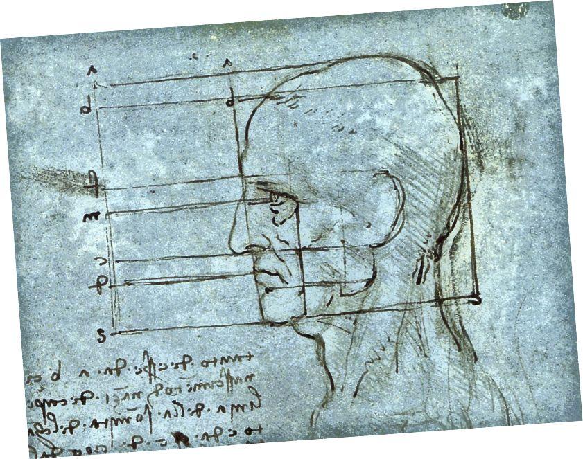 Leonardo DaVinci bunu anladı.