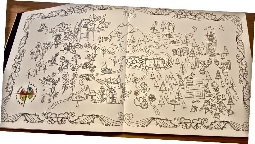 "Z ""Den magiske skogen"" od Johanna Basford"
