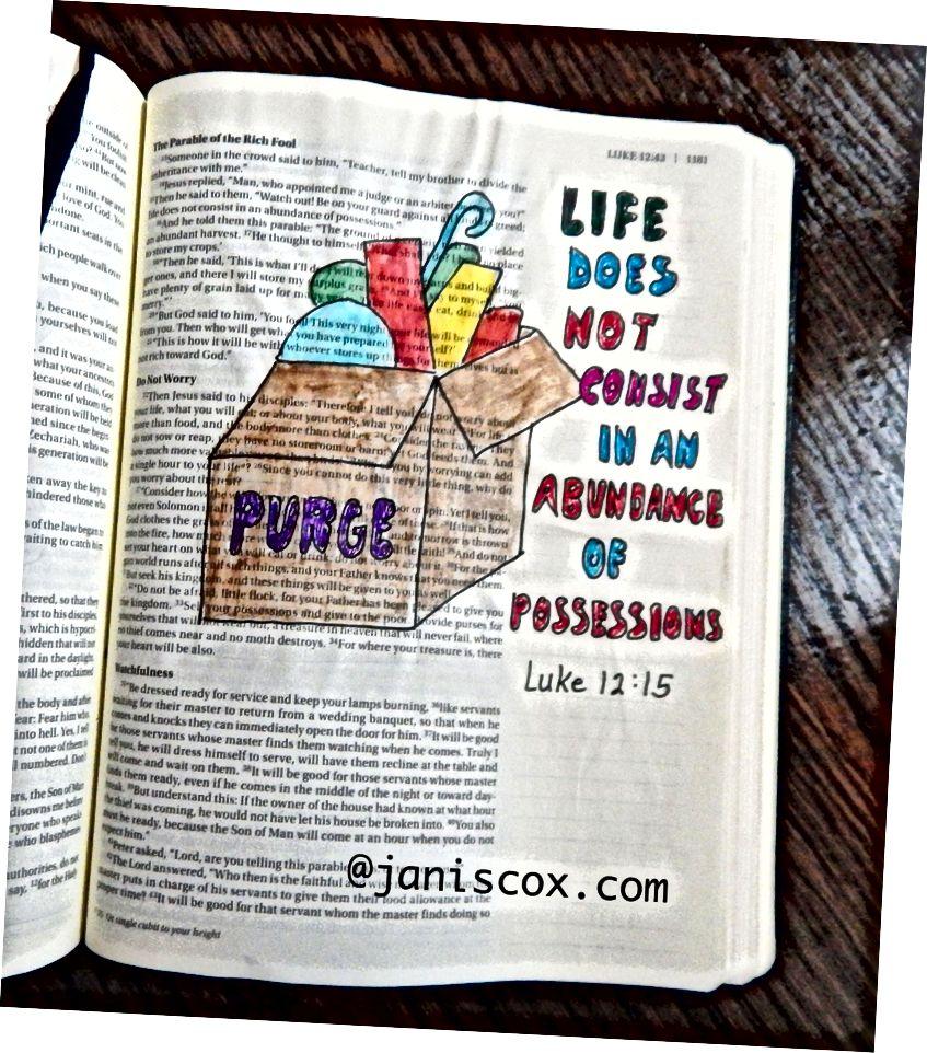 فن الكتاب المقدس - جانيس كوكس