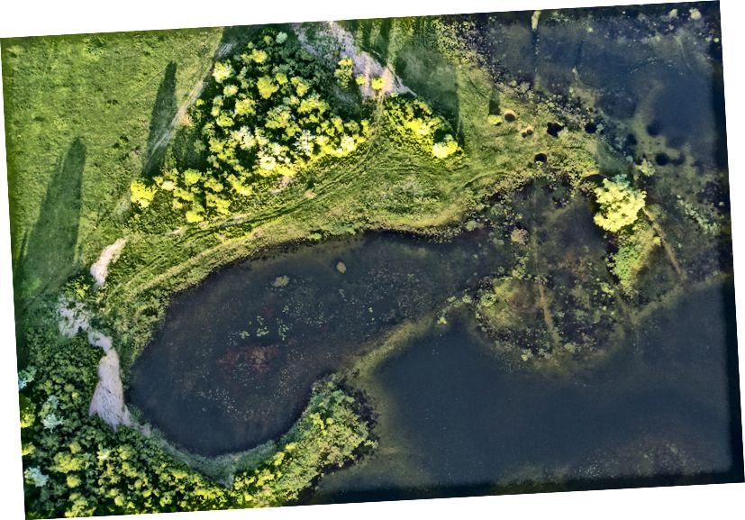 Sebuah teluk kecil di Danau Cerknica yang berselang, Slovenia.