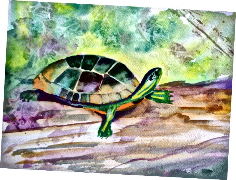 """Obálka mé knihy - Tadeo Turtle. První obraz, díky kterému jsem si pomyslel """"Jsem umělec""""."""
