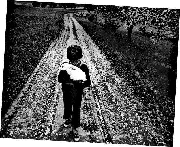 L: Фото Антанаса Межанскаса. Р: Фотография Антанаса Суткуса, друга Витаса Луцкуса.