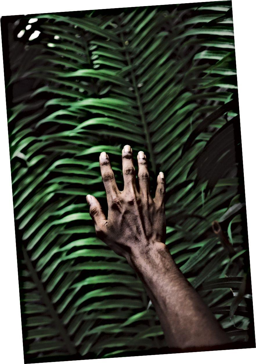 Լուսանկարը ՝ Unsplash- ի (Մուհամմեդ Լամա)