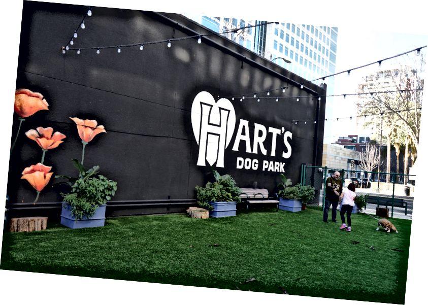 Hart's Dog Park, оазис в коммерческом деловом районе.