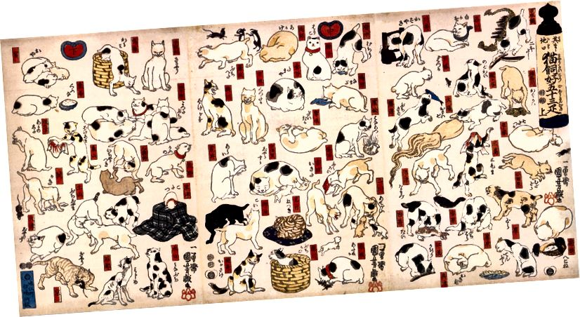 Pişiklərin digər mümkün kvant halları. Utagawa Kuniyoshi: Tkkayda'nın əlli üç stansiyası tərəfindən təklif olunan pişiklər