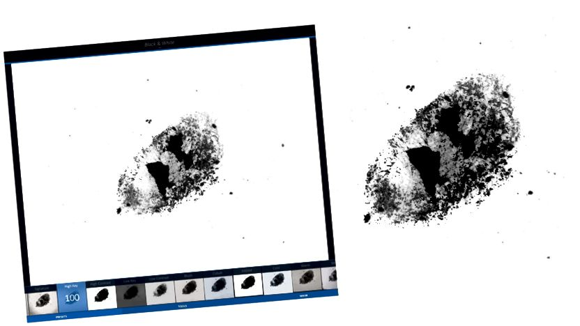 Vlevo: Obrázek byl upraven v aplikaci Enlight pomocí filtrů -> BW -> High Key. Vpravo: Obrázek upravený ve Photoshopu. Ať už si vyberete jakýkoli editor, můžete vidět všechny ty krásné textury, které vyjdou - obojí jsou skvělé možnosti.