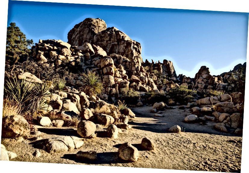 Joshua Tree boulders - XT2, ISO200, f5.6 1/640 sec