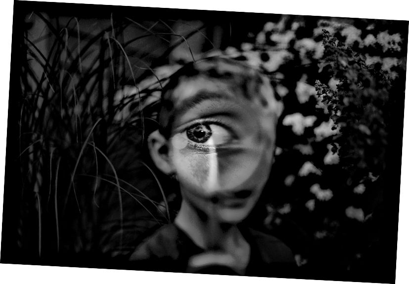 Tytia Habing / Göz casusu, Watson, IL, 2015.