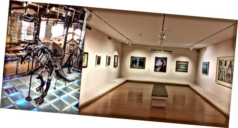 Музеите са много различни, не само физически, но и културно. [Източник: Оливие Бручес вс.]