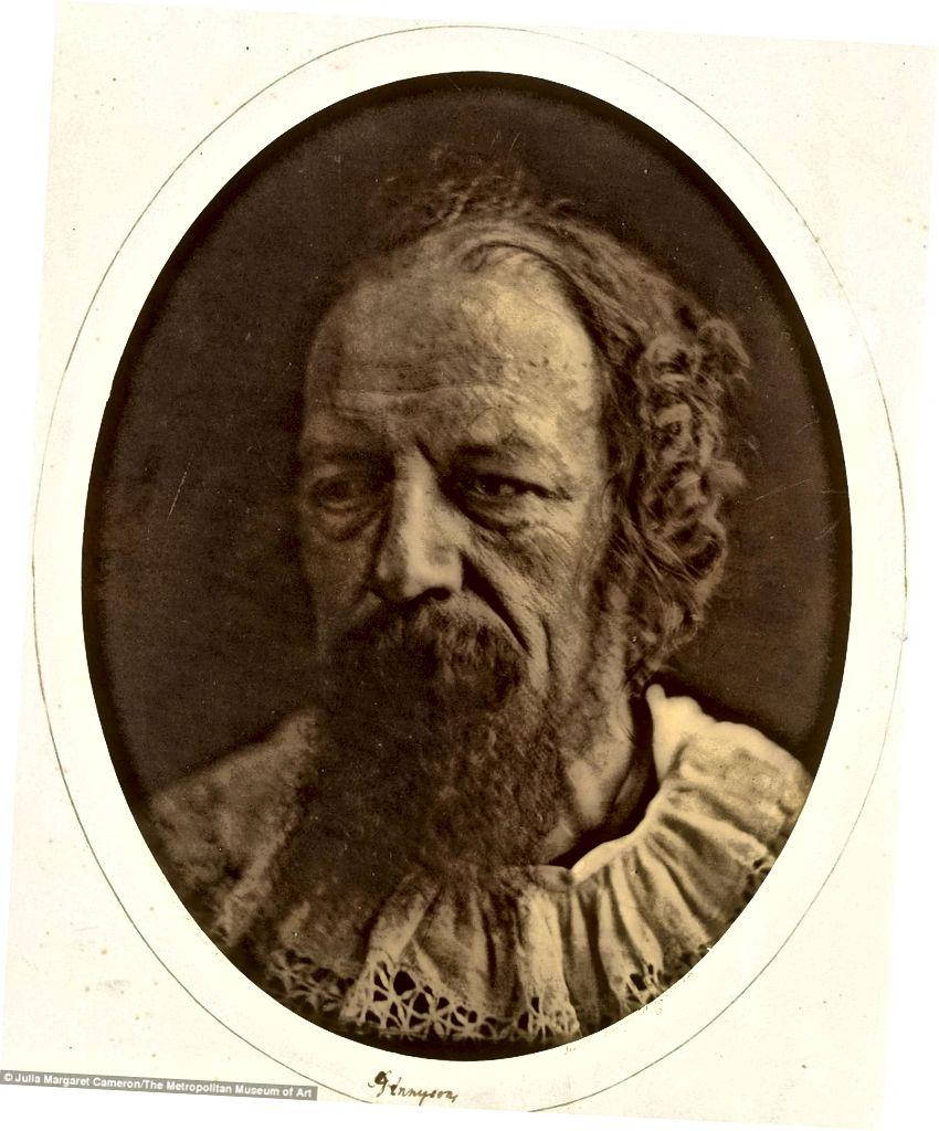 লর্ড টেনিসনের ক্যামেরনের অনেক প্রতিকৃতির একটি, সি। 1864 (ছবির ক্রেডিট: ডেইলি মেল)