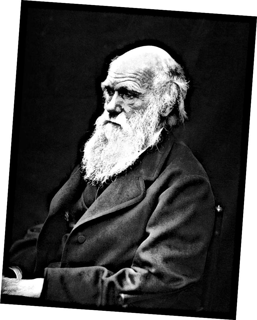 Портрет Кэмерона 1869 года Чарльза Дарвина (Фото любезно предоставлено Викимедиа)