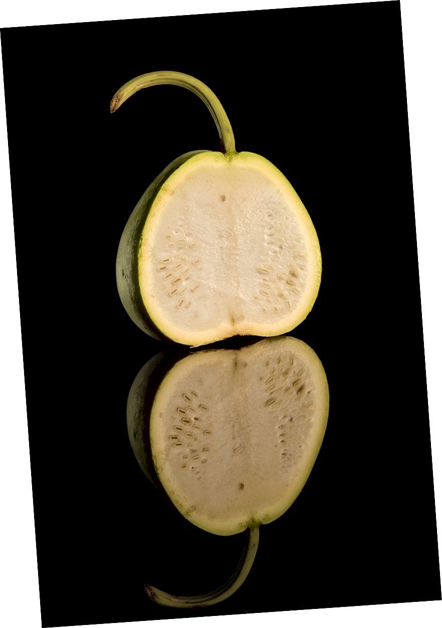 Կլոր շիշի խառնուրդ (կալաբաշ):