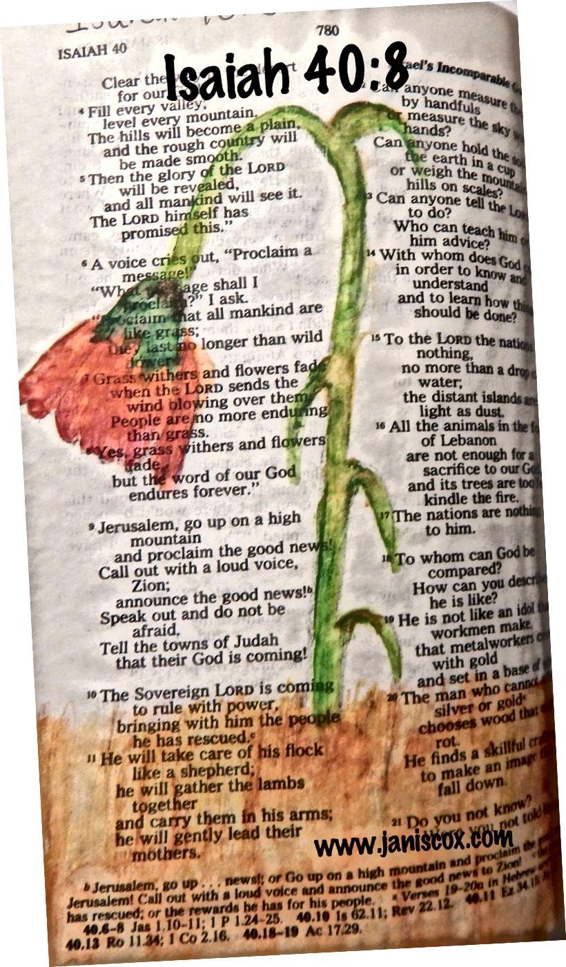 En annen tidlig bibelskunst av Janis Cox