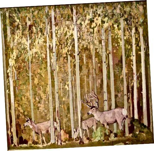 Blacktail Deer in Aspens, 1924, William Herbert Dunton (Američan 1878–1936) Olej na plátně; Sbírka JKM
