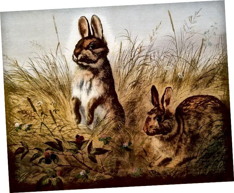 Rocky Mountain Hares, William Jacob Hays (Američan, 1830–1875. Olej na plátně; JKM Collection)