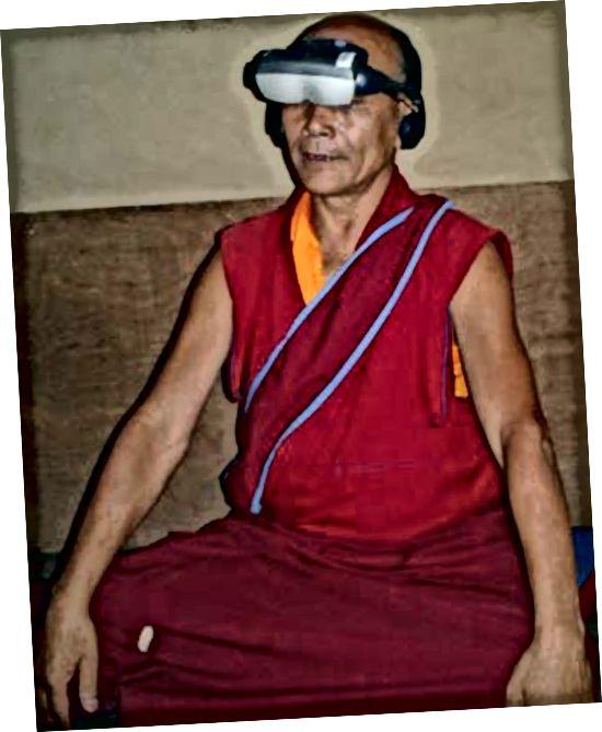 Carter, OL et al. Meditasiya Tibet Buddist rahiblərindəki qavrayış rəqabətini dəyişdirir. 2005. Kağız, təqdimat