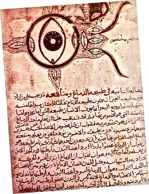 Əl Həsən İbn Əl Heytham, Optika Kitabı. c1000 CE.