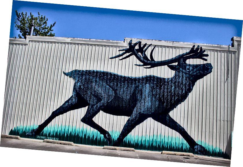 Роспись горного карибу в Сандпойнте, штат Айдахо, авторы Роджер Пит, Масатл и Джой Маллари.