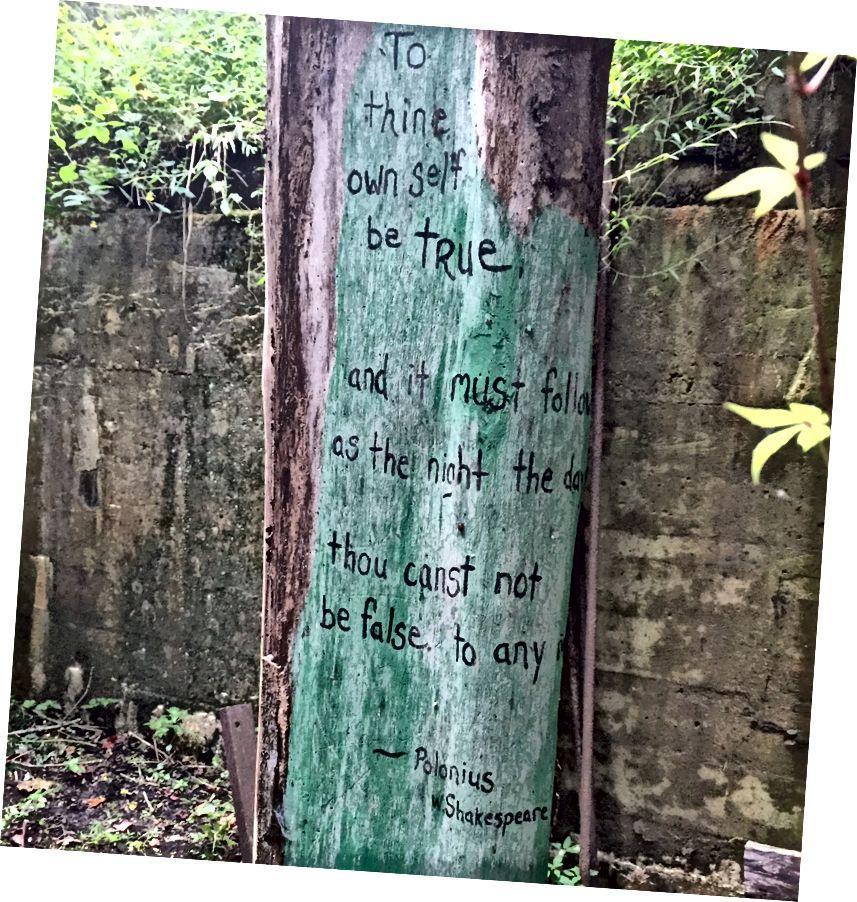 Ռեյչելը պնդում է, որ ծառը փլատակների ներսում կա Շեքսպիրի սիրված գնանշմամբ: