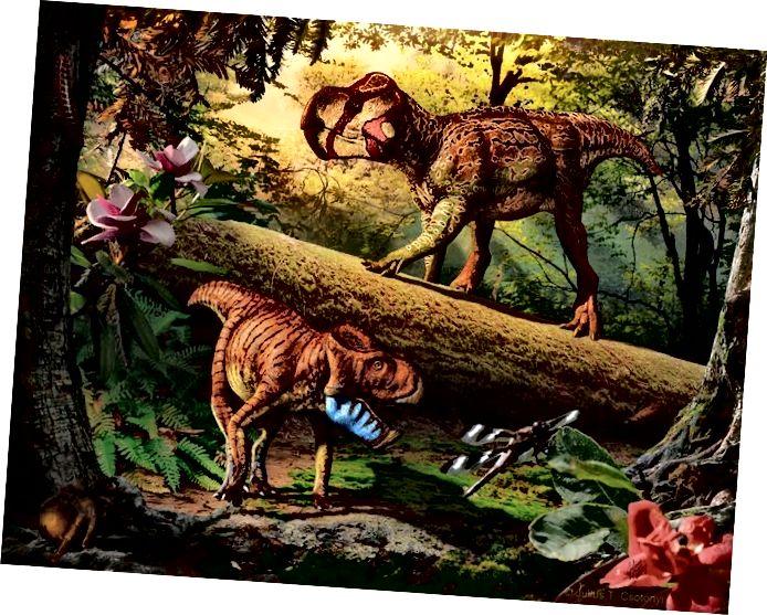 "Autor: Julius T. Csotonyi, ""Sztuka dinozaurów"""