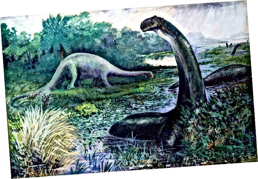 ブロントサウルス—チャールズ・R・ナイト、1897