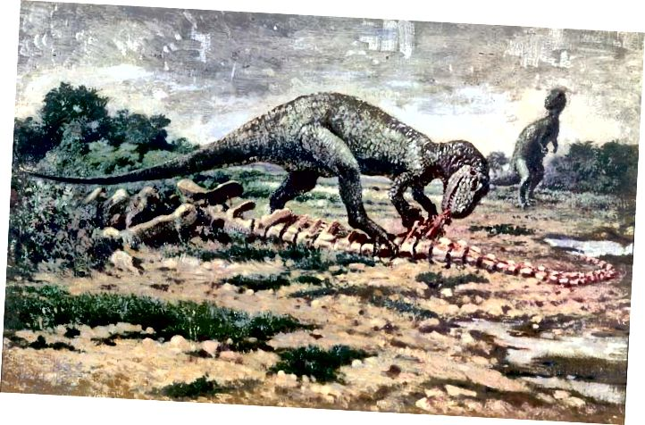 Allosaurus 2 - Charles R. Knight, 1919