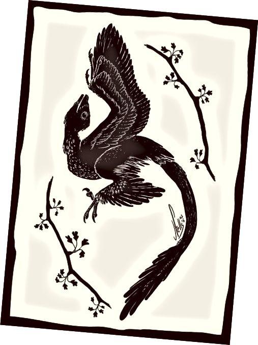 Microraptor i ginkgo estilitzats