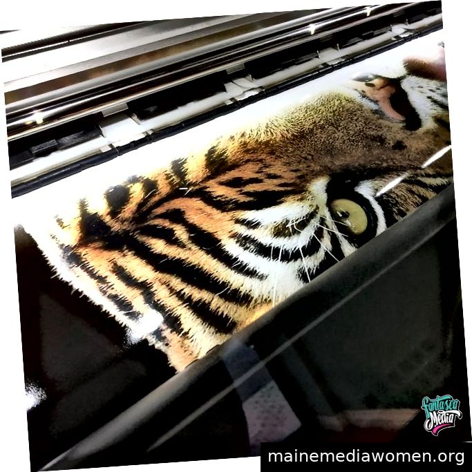 Zoo Miami Fahrzeugverpackung von Fantasea Media