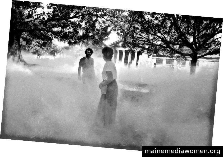Die japanische Künstlerin Fujiko Nakaya aus Tokio arbeitet mit Assistenten, um ihre Nebelskulptur in der Domäne von Sydney gegenüber der Art Gallery von New South Wales zu konstruieren. Der durch einen druckgepumpten Dunst aus reinem Wasser erzeugte Nebel und das Werk werden im Rahmen der Biennale von Sydney (11. November 1976) von Sydney gezeigt
