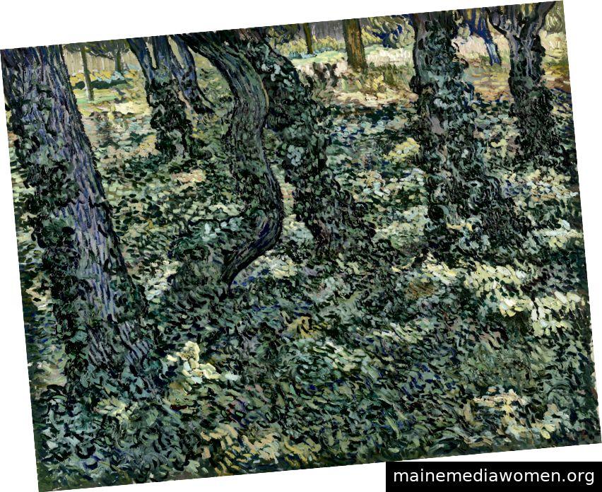 Saint-Rémy-de-Provence, Juli 1889 - Vincent van Gogh