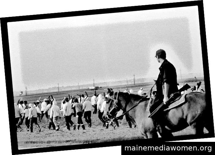 © Chandra McCormick, Line Boss Angola, 2013. Von Fleetwood zur Verfügung gestelltes Foto, mit Genehmigung von C. McCormick.