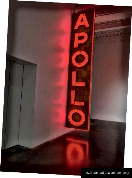 Nari Ward: Wir das Volk. 2019. Ausstellungsansicht: New Museum, New York. Foto: Maris Hutchinson / EPW Studio
