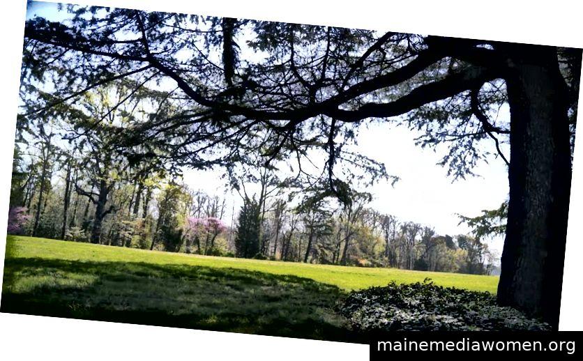 Das Anwesen in Reynolda Gardens bietet 30 Hektar zum Bummeln und Entdecken.