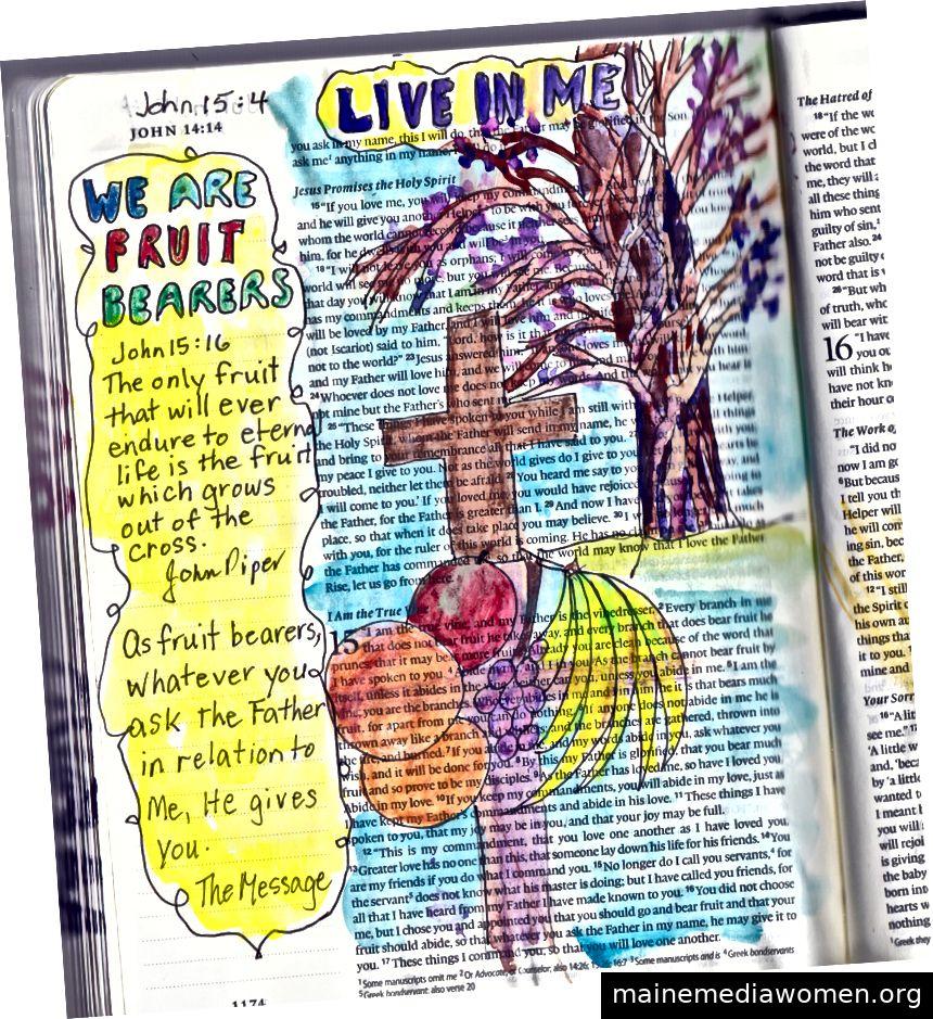Bible Journal for John 15: 4 von Janis Cox