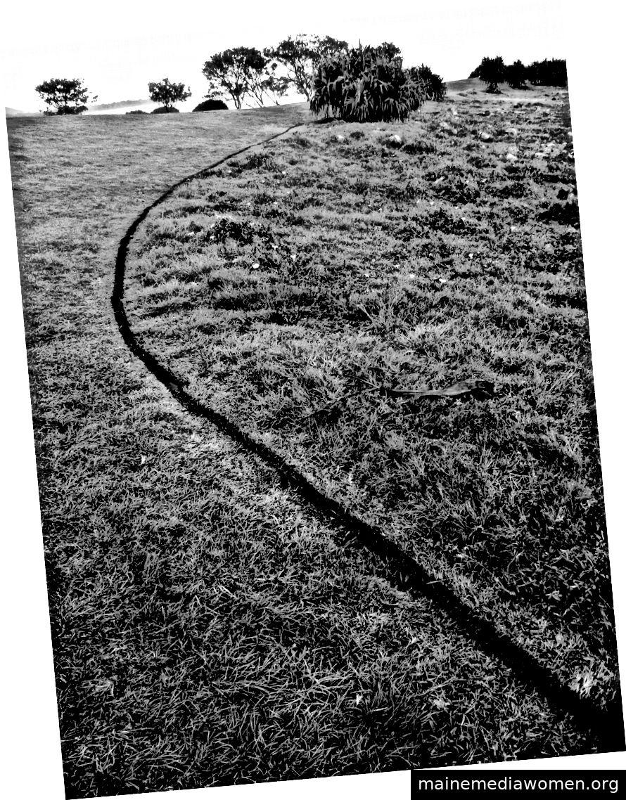 Gerry Joe Weise, Linie Black Charcoal, Land Art Australia, 2018.