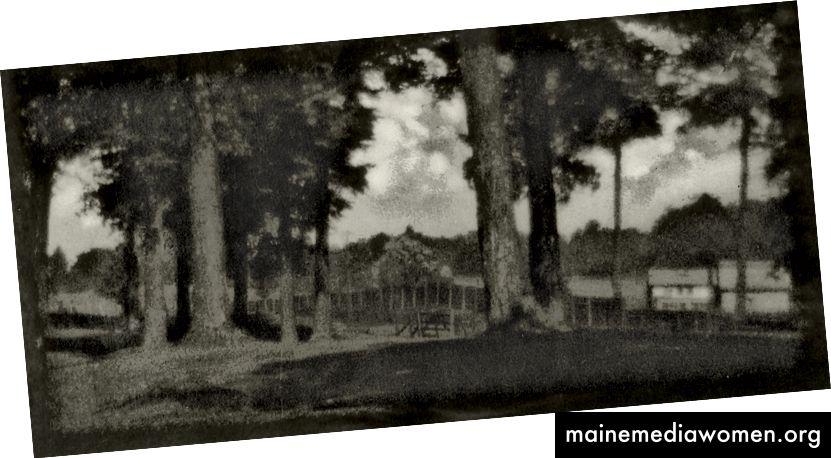 Ein längst vergessener Fotograf namens William Porterfield hat dieses Bild 1905 gemacht. Aber vielleicht ist er heute besser bekannt, wenn die F64-Schule nicht so eifrig erklärt hätte, dass der Pictorialismus tot sei