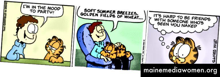 Zufälliger Garfield Generator
