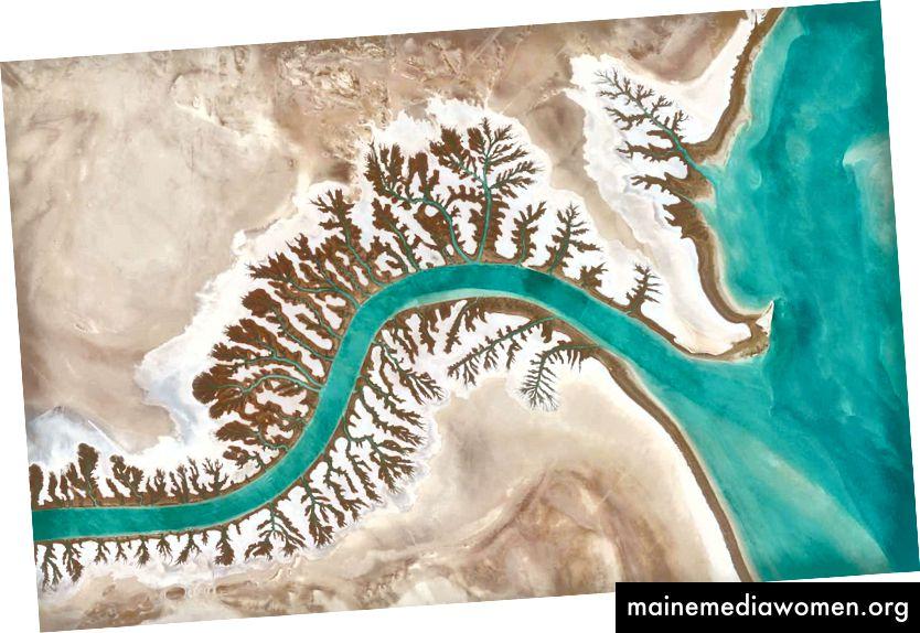 30 · 327274 °, 48 · 829255 ° Dendritische Entwässerungssysteme sind rund um die Shadegan-Lagune bei Musa Bay im Iran zu sehen. Das Wort