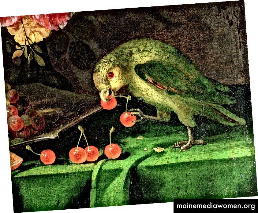 Stillleben mit Früchten und Blumen, Detail eines Papageien von Jan Davidsz. de Heem