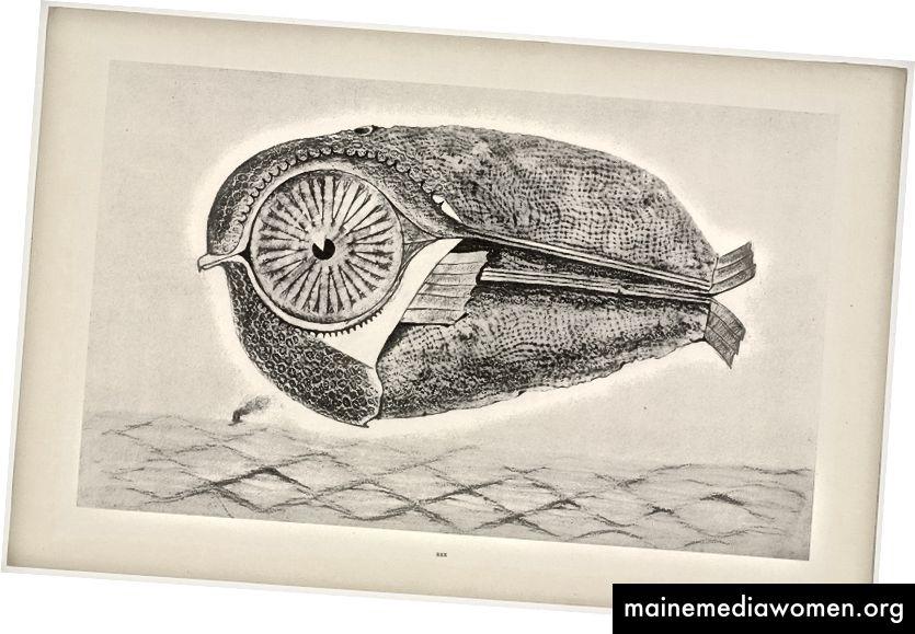 Max Ernst. Der Flüchtling (L'Évadé) aus der Naturgeschichte (Histoire Naturelle). Um 1925, veröffentlicht 1926 © 2017 Artists Rights Society (ARS), New York / ADAGP, Paris