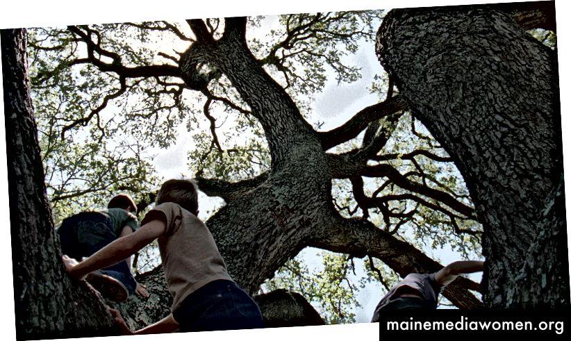 Der Baum des Lebens (2011) Regie: Terrence Malick