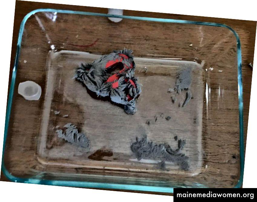 Eine lustige Lektion, die sie gelernt haben, was passiert, wenn man den Magneten in die Eisenfüllungen steckt, anstatt sie von außerhalb des Glases zu bewegen!