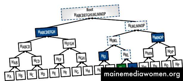 Při pokusu o ověření obrázku Hk, hash s HL dá HKL. Pokud to uděláte správně na stromě, pak by se vaše poslední hash mělo shodovat s kořenem. Voilà, obrázek ověřen.
