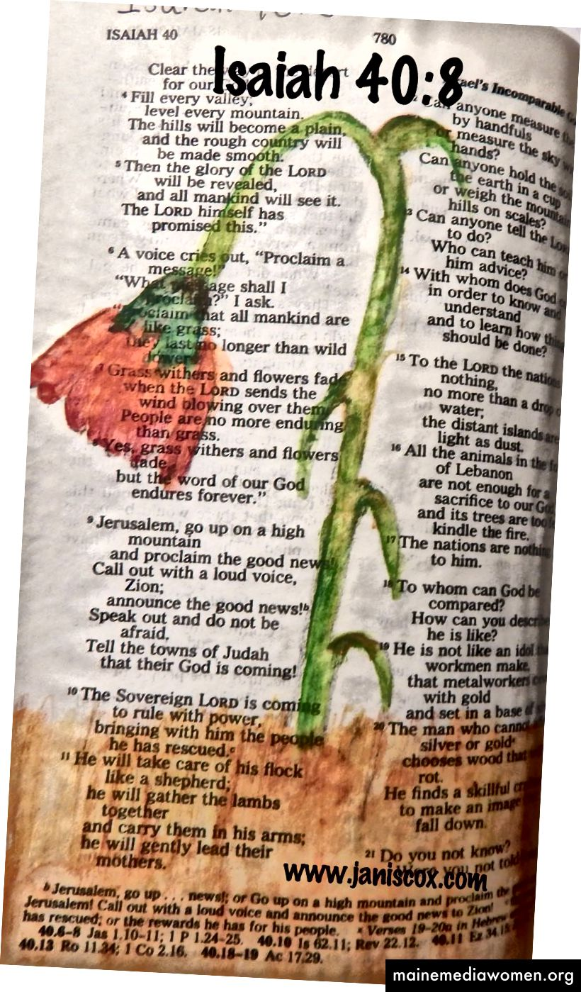Další ranné biblické umění Janis Cox