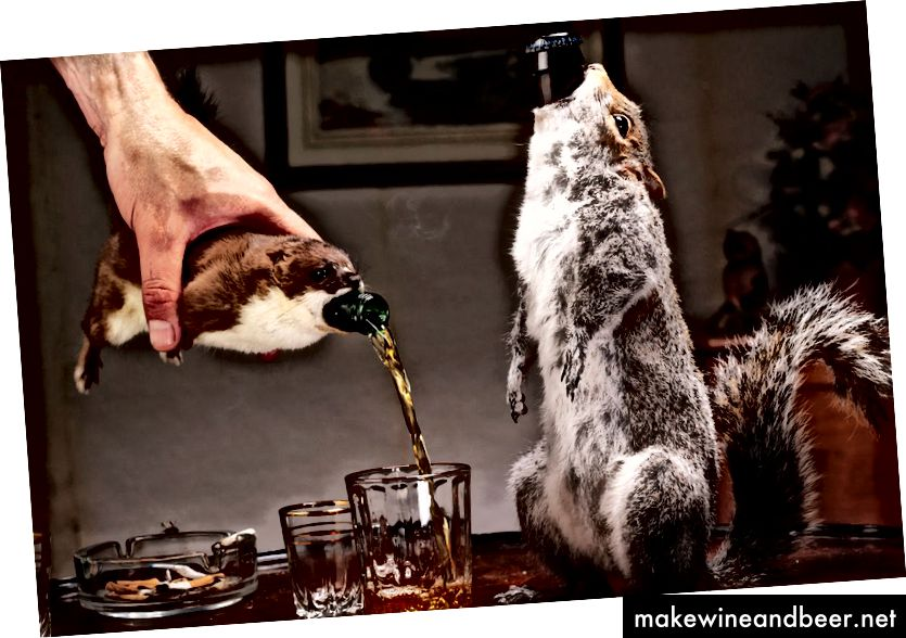 آبجو در لاشه مرده پیچیده شده است
